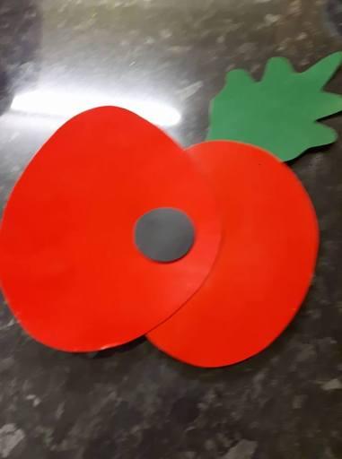 Devizes Scooter Club made poppies for their scooters
