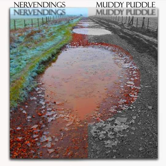Nerve Endings Love Muddy Puddles!