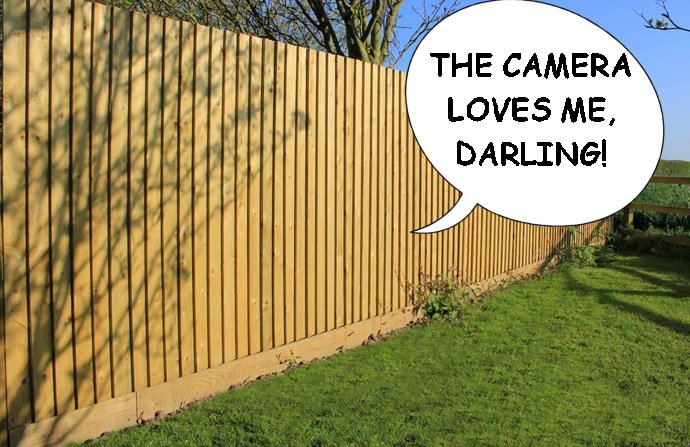 The World's Most FamousFences!