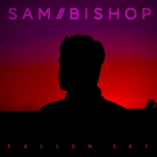 Sam Bishop and the Fallen Sky