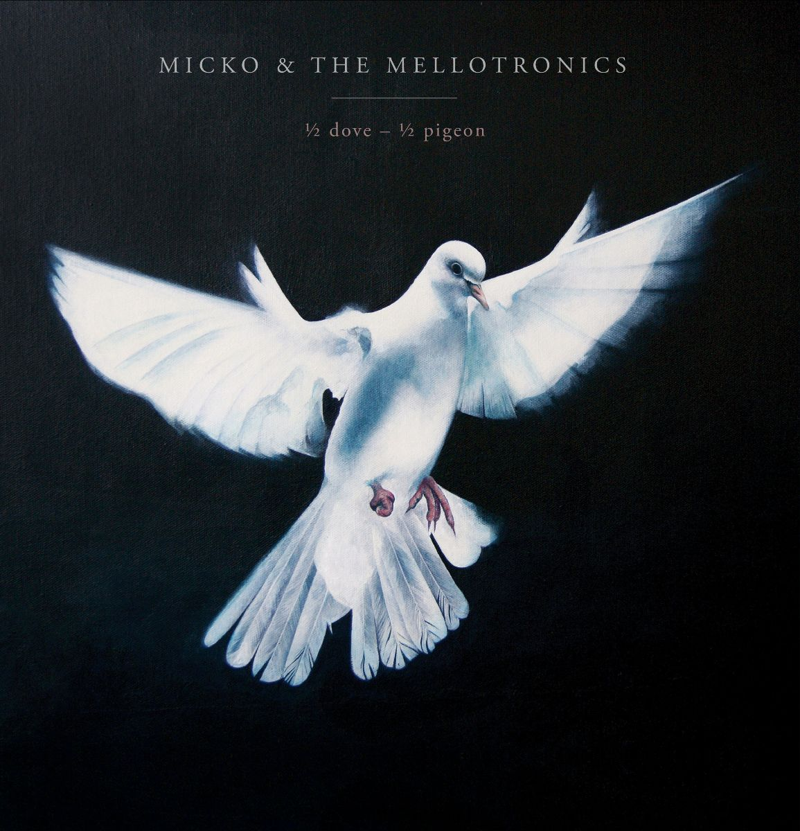 1/2 Dove – 1/2 Pigeon with Micko and theMellotronics